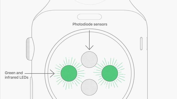Apple Watch 心率1 - Apple Watch如何监测心率