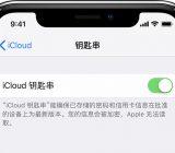 iPhone如何设置iCloud钥匙串