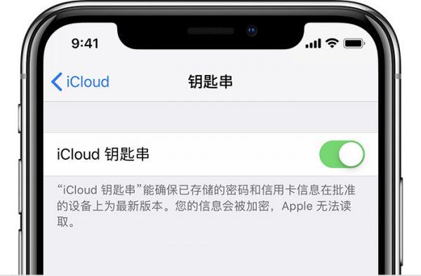 icloud e1548057670880 - iPhone如何设置iCloud钥匙串